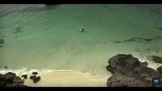 Затерянный Остров Приключения Фэнтези Lost Island