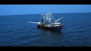 Рыбаки Фильм ужасов
