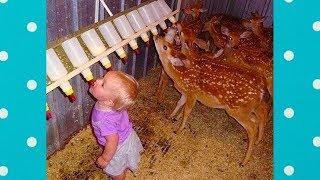 Смешные дети и животные в зоопарке