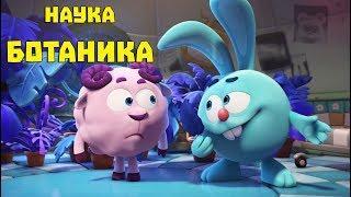Ботаника - сборник. Смешарики. ПИН - код | Познавательные мультфильмы для детей