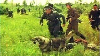 Военные Фильмы СЛЕД ГЕСТАПО Военные Фильмы 1941-45 HD Video