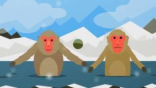 ДЕЛАЙ ТАК! Мультфильм Физминутка для детей Развивающие мультфильмы для детей