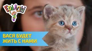 Ералаш Вася будет жить с нами (Выпуск №297)