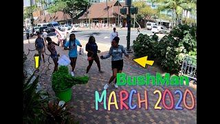 BUSHMAN MARCH 2020 HAWAII