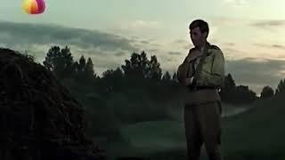 Военные Фильмы про Партизан ЗАПАДНЯ 1941-45 ВОЕННОЕ КИНО