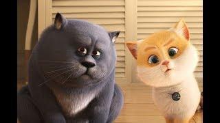 Мультфильмы 2019 Большой кошачий побег