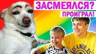 НЕ ЗАСМЕЙСЯ ЧЕЛЛЕНДЖ! +РОЗЫГРЫШ МАШИНОК! Реакция на смешные видео про животных!