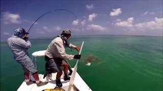 Смешные моменты на рыбалке 2020.