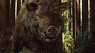 7 самых опасных животных России!