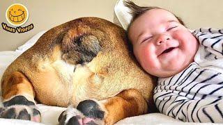 FUNNY VINE ★ Самые смешные дети играют с собаками #2 || Funny Babies and Pets Videos
