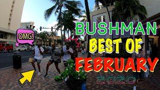 BUSHMAN BEST OF FEBRUARY 2020