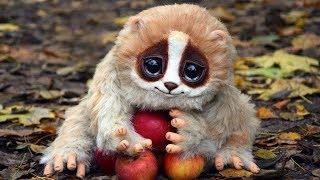 Топ-10 Милых Животных, Которые Могут Вас Убить