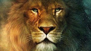 Лев Самый Мощный Зверь Планеты Царь среди животных (документальный фильм)