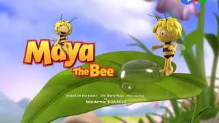 Пчёлка майя(21)