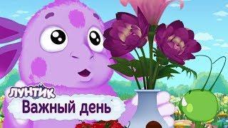 ЛУНТИК Важный день Сборник мультфильмов 2018 Мультики для детей