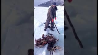 Подборка приколов .на рыбалке.на охоте и не только 2020