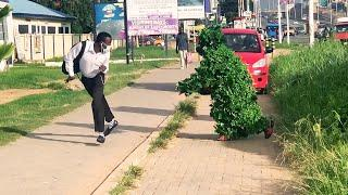 BEST BUSHMAN PRANK COMPILATIONS 2020 : ALMOST.! FELL Down