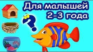 Развивающее видео для детей 2-3 лет. Развитие мышления. Головоломки для малышей обучающие