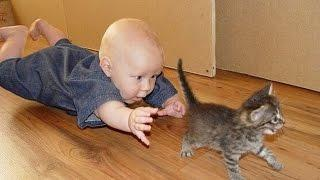 Лучшая подборка Кошки и Дети!Приколы с Детьми! / Funny Videos Cats and Kids!