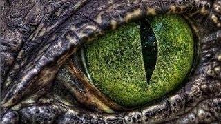 ЯЩЕР Фильм Кино Фантастика Ужасы Триллер Зарубежные фильмы