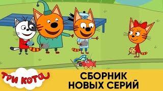 Три Кота | Сборник новых серий | Мультфильмы для детей
