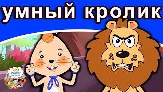 умный кролик | русские сказки | мультфильм | сказки на ночь для детей | русские сказки мультфильм