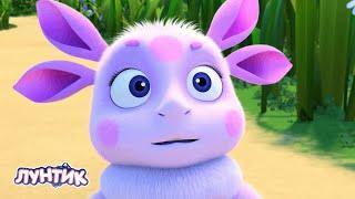 Лунтик | Помощник Новая серия | Сборник мультфильмов для детей